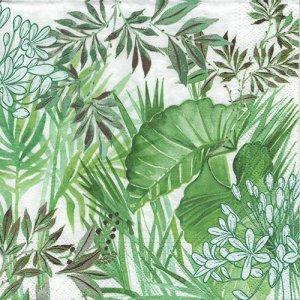 ペーパーナプキン(33)NOUVEAU:(5枚) Tropical Plants-NO130