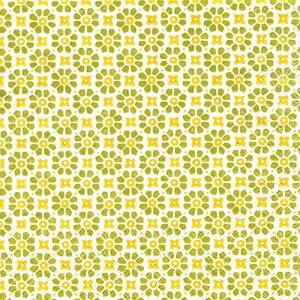 ペーパーナプキン(33)AMB:(5枚)Laureen green & yellow--AM625