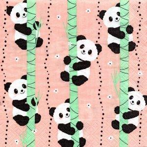 ペーパーナプキン(33)paper:(5枚)Climbing pandas-PA329