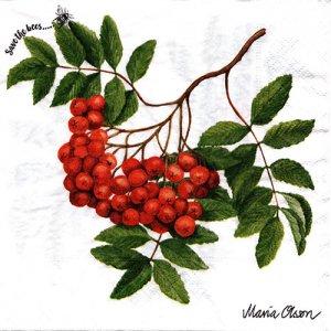 ペーパーナプキン(33)paper duni:(5枚)Rowan berry-PA331