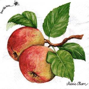 ペーパーナプキン(33)paper duni:(5枚)Apple-PA332