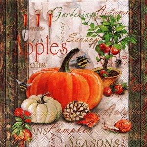 ペーパーナプキン(33)AMB:(5枚)Autumn Gardening-AM652