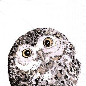 ペーパーナプキン(33)ppd:(5枚)Owl-PP384