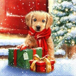 ペーパーナプキン(33)home:(5枚)Little Puppy-HO235