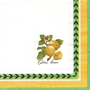 ペーパーナプキン(33)VB:(5枚)FRENCH GARDEN-VB6