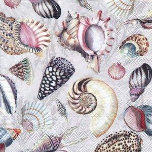ペーパーナプキン(33)IHR:(5枚)SHELLS OF THE SEA nature-IH551