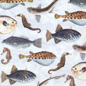 ペーパーナプキン(33)IHR:(5枚)FISH OF THE SEA blue-IH552