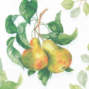 ペーパーナプキン(33)paw:(5枚)Garden Pear-PW210
