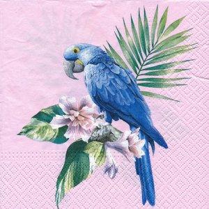 ペーパーナプキン(33)paw:(5枚)Exotic Parrot-PW215