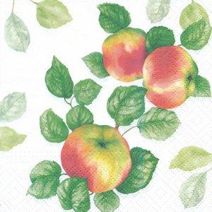 ペーパーナプキン(33)paw:(5枚)Garden Apple-PW219
