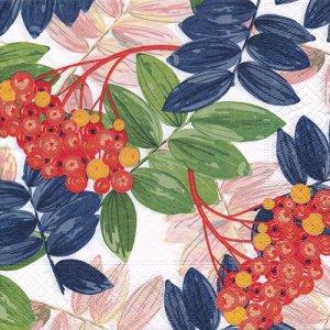 ペーパーナプキン(33)paper duni:(5枚)Fall Beauty-PA343