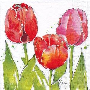 ペーパーナプキン(33)ppd:(5枚)Pink Tulips-PP437