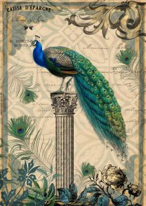 <img class='new_mark_img1' src='https://img.shop-pro.jp/img/new/icons1.gif' style='border:none;display:inline;margin:0px;padding:0px;width:auto;' />【A3】Decoupage Queen ライスペーパーDQRP_0038L
