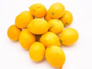 レモン 国産【愛媛県産】無農薬 瀬戸内|約3kg|S〜3L混載