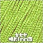 セセサ459_スプリンググリーン