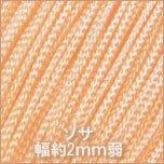 ソサ100_09_シャイニーオレンジ
