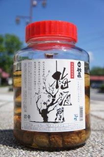《リキュール》竹泉(ちくせん)純米酒仕込み 梅酒(広口瓶)2.7L・兵庫県 田治米合名会社