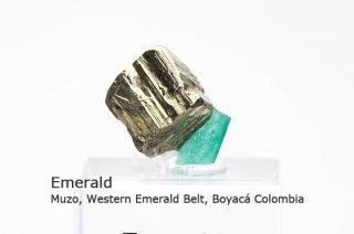 エメラルド 結晶石 コロンビア産|緑柱石|2342A|Muzo, Western Emerald Belt, Boyac Colombia|Emerald|