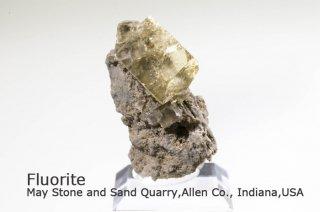 フローライト 結晶 インディアナ アメリカ産|May Stone and Sand Quarry, Allen Co., Indiana, USA|蛍石|