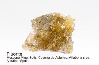 フローライト 結晶 スペイン イエローフローライト Moscona Mine,, Villabona srea, Asturias, Spain 蛍石 Fluorite 
