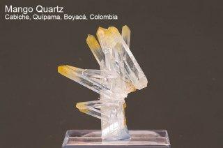 マンゴークォーツ 結晶 コロンビア産|Cabiche, Quipama, Boyaca, Colombia|Quartz|水晶|2465A|
