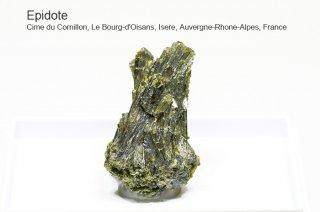 エピドート 結晶 フランス産|Cime du Cornillon, Le Bourg-d'Oisans, Isere, Auvergne-Rhone-Alpes, France|緑簾石|