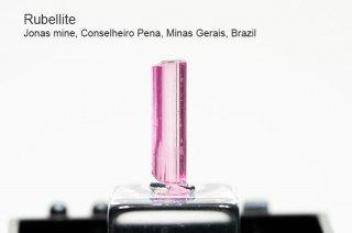 ルベライト 結晶 ブラジル産|電気石|Jonas mine, Conselheiro Pena, Minas Gerais, Brazil|Rubellite|Tourmaline|
