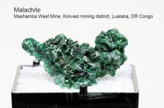 マラカイト 結晶 コンゴ産 Mashamba West Mine, Kolwezi mining district, Lualaba, DR Congo Malachite 孔雀石 