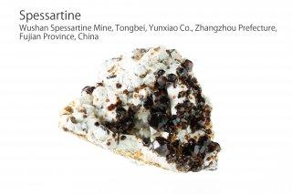 スペッサルティン 結晶 チャイナ産|Spessartine|ガーネット|Wushan Spessartine Mine, Fujian China|満礬柘榴石|
