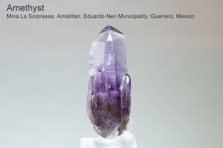 アメジスト 結晶 メキシコ産 ゲレロ産 アメジスト Mina La Sorpressa, Amatitlan,  Guerrero, Mexico Guerrero Amethyst 紫水晶 