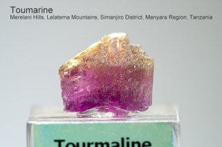 トルマリン 結晶 タンザニア産|電気石|Merelani Hills, Lelatema Mountains, Simanjiro Manyara Tanzania|Tourmaline|