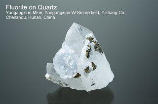 フローライトonクォーツ 結晶 チャイナ Yaogangxian Mine, Yaogangxian W-Sn ore field Yizhang Co., Chenzhou, Hunan China
