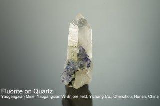 フローライトonクォーツ 結晶 チャイナ|Yaogangxian Mine, Yaogangxian W-Sn ore field Yizhang Co., Chenzhou, Hunan China