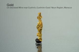 ゴールド 自然金 モロッコ産|新産のゴールド|Un-disclosed Mine near Guelmin, Guelmim-Oued Noun Region, Morocco|黄金|