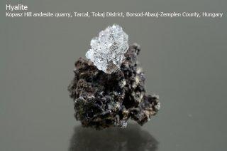 ハイアライト 結晶 ハンガリー産 Kopasz Hill andesite quarry, Borsod-Abauj-Zemplen County, Hungary Hyalite 玉滴石 