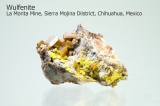 ウルフェナイト with ミメタイト 結晶 メキシコ産|La Morita Mine, Sierra Mojina Diistrict,  Chihuahua, Mexico|Mimetite|