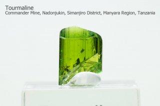 トルマリン 結晶 タンザニア産|電気石|Merelani Hills, Lelatema Mountains, Tanzania|Tourmaline|