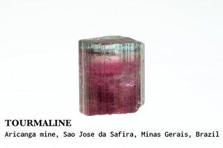 トルマリン 結晶 ブラジル産 リシア電気石 Aricanga mine, Sao Jose da Safira, Minas Gerais, Brazil Tourmaline 
