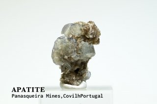 アパタイト 結晶 ポルトガル産|Panasqueira Mines, Covilh Portugal|Apatite|燐灰石|