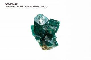 ダイオプテーズ 結晶石 ナミビア産|Tsumeb Mine, Tsumeb, Oshikoto Region, Namibia|Dioptase|翠銅鉱|