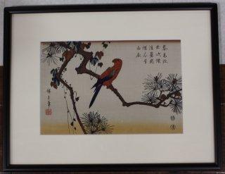 歌川広重「松にいんこ」手摺木版画