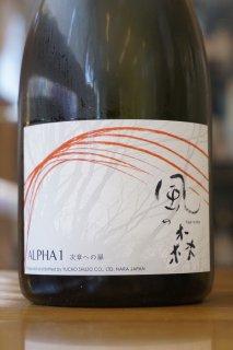 ALPHA風の森 TYPE1