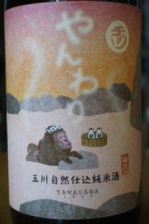 玉川 自然仕込純米酒(山廃) やんわり 1.8L