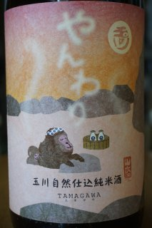 玉川 自然仕込純米酒(山廃) やんわり 720ml