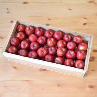 紅玉りんご入り9-10kg(56-64玉)半切り新箱(フタ付き粗仕上げ取手付き)※10月中旬以降のお届けです