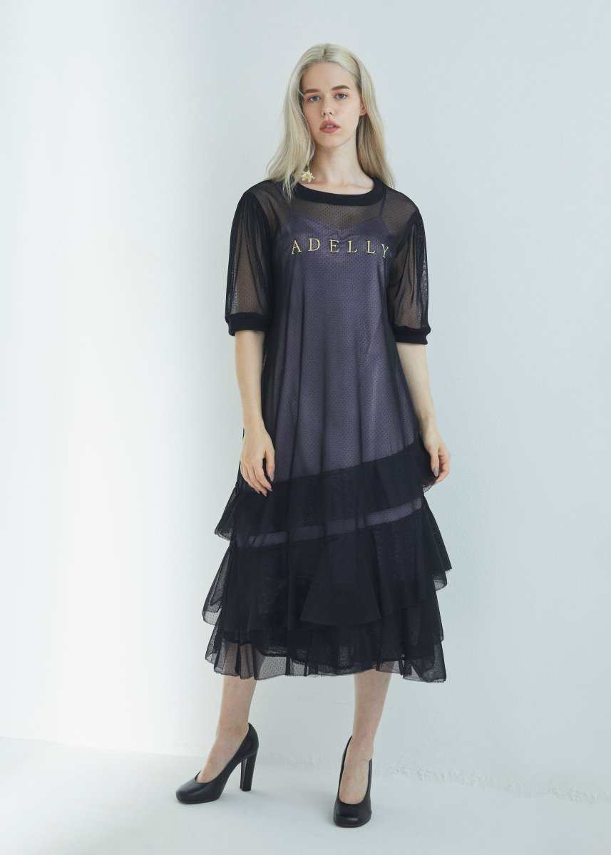 Embroidery tulle frilled dress
