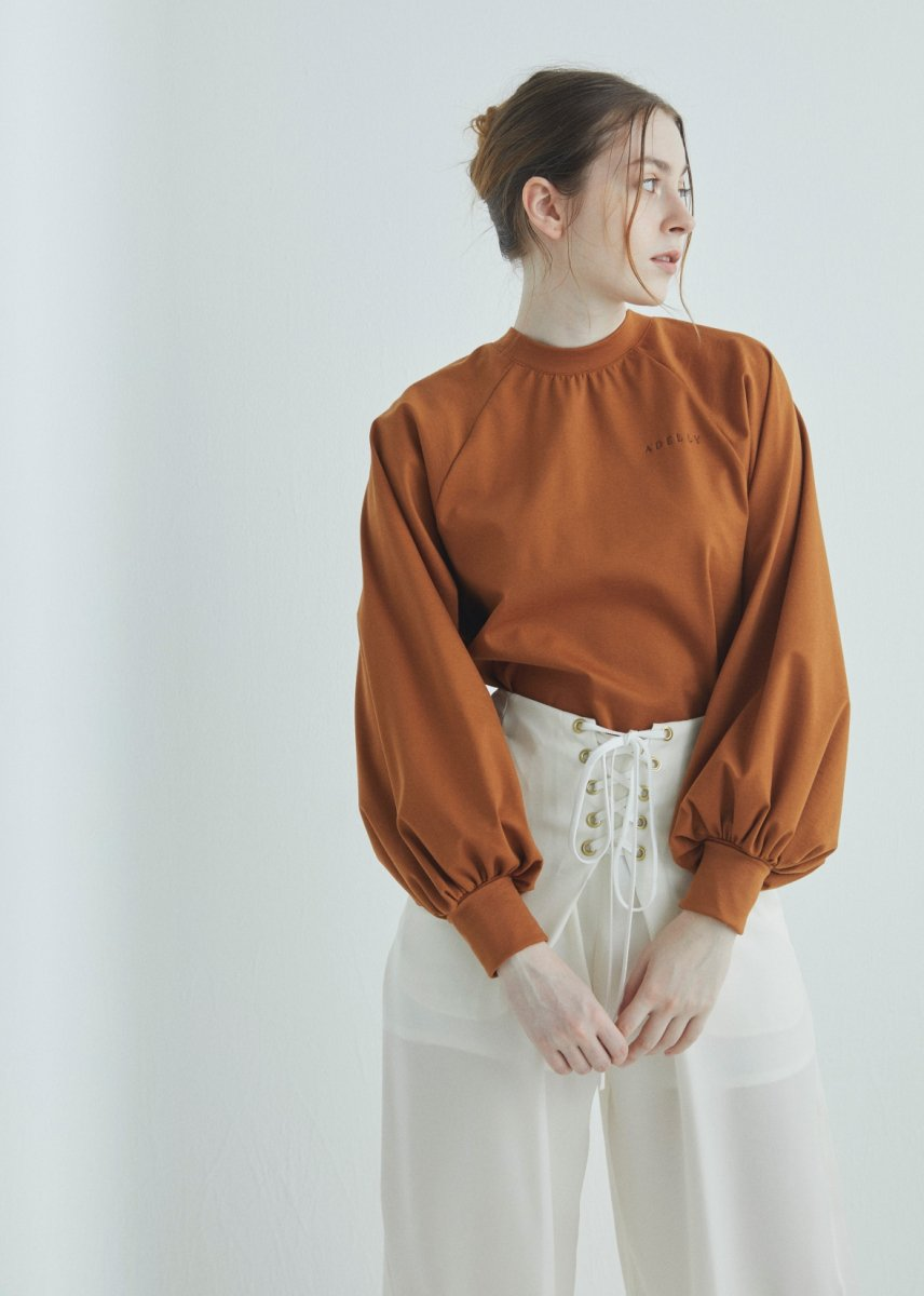 Raglan sleeves dress cut and sew