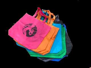 【初代】プロギングバッグ3色セット ※プロギングジャパンを応援!