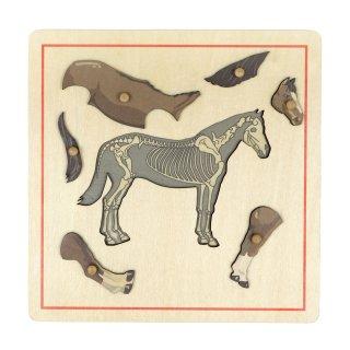 スケルトンのパズル(馬)