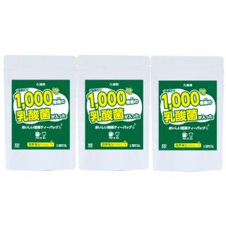 (3袋)1,000億この乳酸菌が入ったおいしい煎茶ティーバッグ